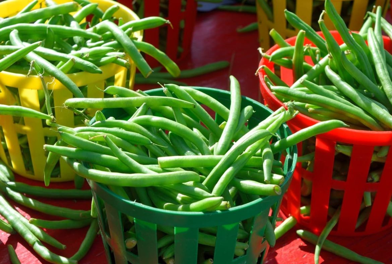 i fagiolini sono legumi